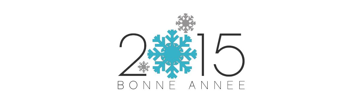 Bonne année 2015 de la part de toute notre équipe!